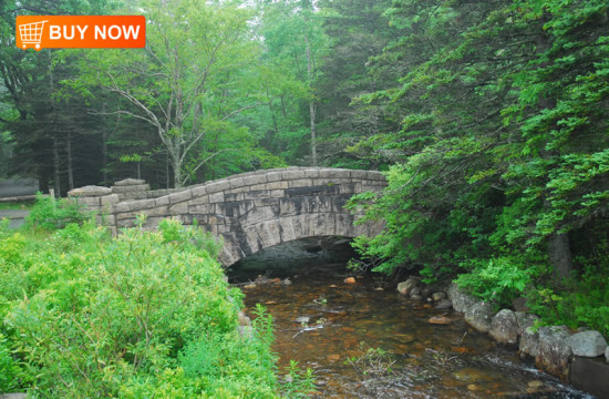 Acadia Bridge