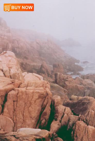 Acadia Rocky Shores