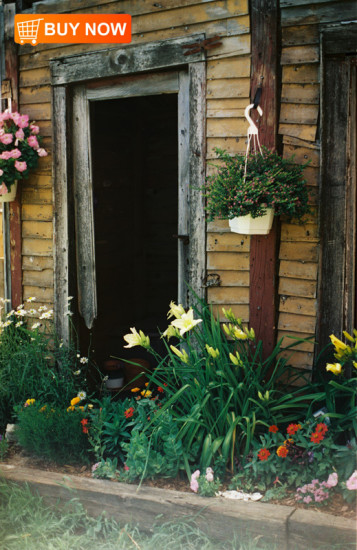 Doorway-with-Flowers
