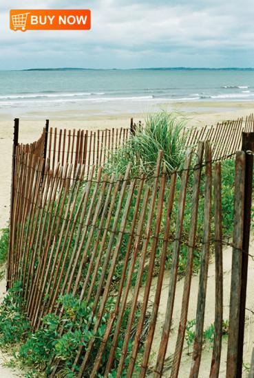 Ocean Scene with Beach Fence
