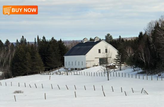 Pittston Farms
