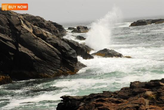 Maine Coast 403