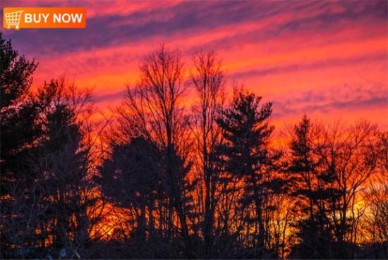 Sunset 415